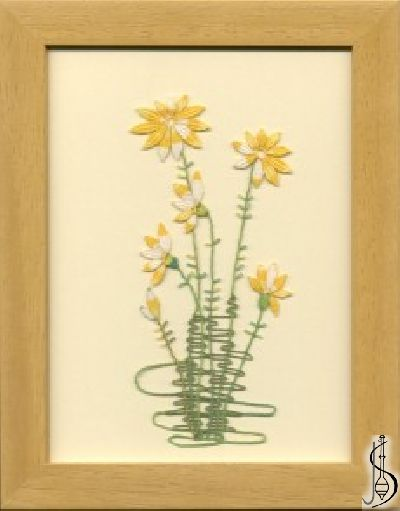 Blossom-senecio No. 10110 